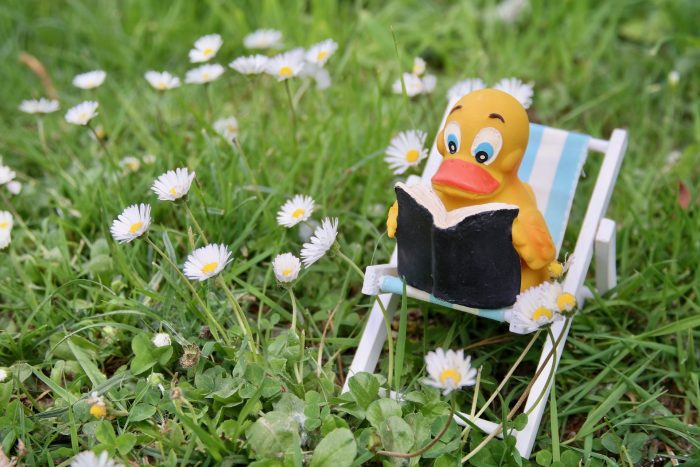 Rubber ducky reading a book sitting on a beach chair - Julie Bourbeau Blogs about favourite books